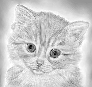 Kitten_by_FantasyBrush