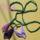lila kálák