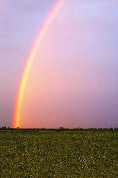 A természet harmóniában van az időjárással 1