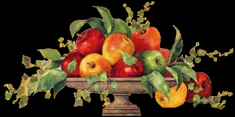 sok gyümölcs,folyadék és mozgás 7