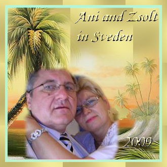ani and zsolt in sweden