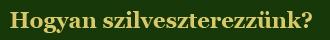szilveszter_menu3