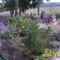 és a hátsó kert ahol készül a tégla kiülő
