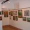 Kiállítás(Csenger 2009 05 01) 015