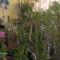 Kisszoba keleti fekvésű növény tároló télen