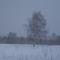 Igazi tél 015