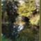 őszi képek11