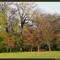 őszi képek12