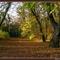 őszi képek 4