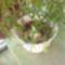 golgotám gyümivel