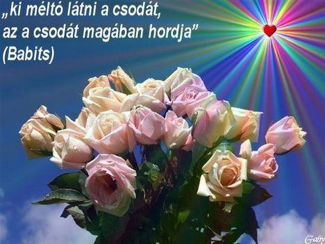 idézet rózsával