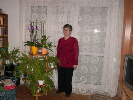én és a virágaim 2