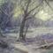 DSC00007, Csörge tó télen