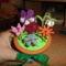 virágok2