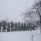 Páhi tél 2010.02.07.