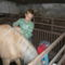 kisfiam és a lova