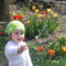 Kis unokám a tulipánok között