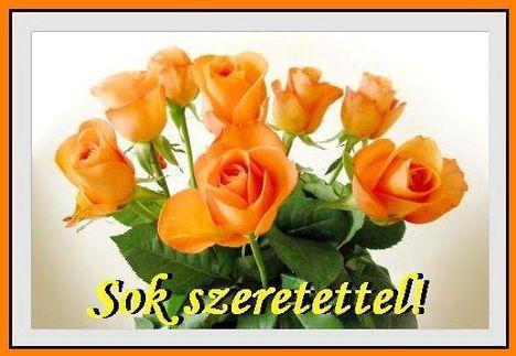 sok_szer..