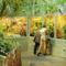 Látogatás Nagytétényen a Tropikáriumban 46