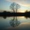 majsi horgásztó naplemente 9