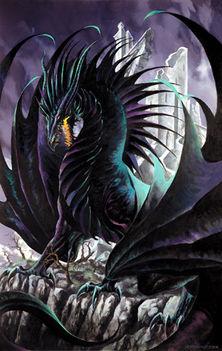 sárkány 20