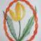Husvéti tulipán