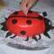 """P4250007Az első """"katica"""" tortám"""