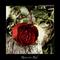 rózsa-12