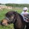 SDC12454Lányom lovagól