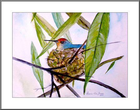 Fészkén ülö madárka