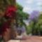 Pretoria kertvaros