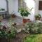 2010 májusi kertünk 6
