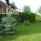 2010 májusi kertünk 9