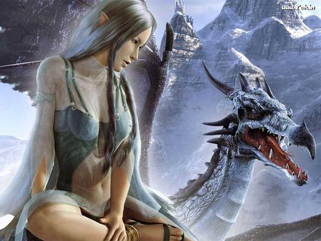 fantasy--elfe-and-dragon_355