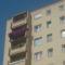 Gyönyörű petúniám az erkélyemen!:)