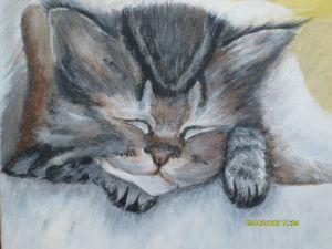 Csizmás Kandur alszik