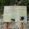 Torjai Büdösbarlang
