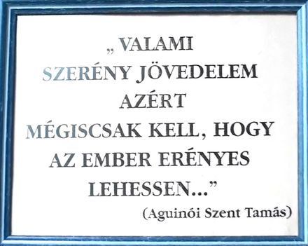 ASSZONYI TAMÁS 30
