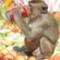 Szomjas majom