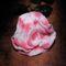 cirmos rózsa