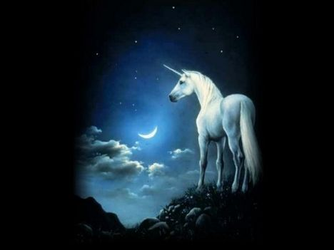 Fantázia lovak I.  7