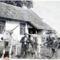 Gulyaállás 1950 (Samu G)