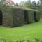 botanikus kert Dandee egyetemé