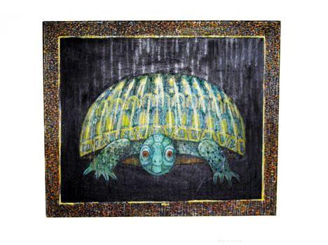 Bikocsi Dániel-teknős