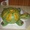 teknős torta