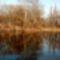 Csörge-tó 4