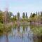 Csörge-tó 6