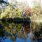 Csörge-tó 8