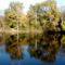 Csörge-tó 9