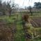 Őszi kert